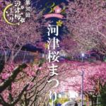 河津桜まつりxポケモンGOのコラボ開催2/10〜3/10:おすすめ周遊マップも配布